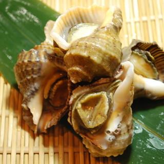 ★海女小屋・貝祭り~貝食べ比べ~赤ニシ貝