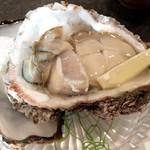 67357899 - 岩牡蠣