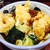 Yashima - 料理写真:ゴロっとした鶏天がうまい!