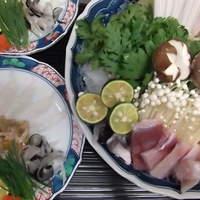 菜 - 天然とらふぐ刺し ふぐちり鍋(冬季のみ)