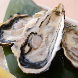 五島列島から産地直送の「牡蠣」