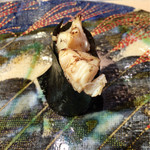67474241 - 北寄貝の貝柱 (北海道 八雲)