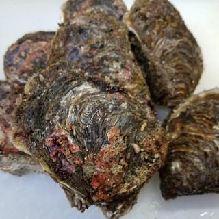 6月23日(金)石川県産岩牡蠣入荷です。