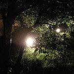 蕎麦 惠土 - 夜雨に濡れた庭