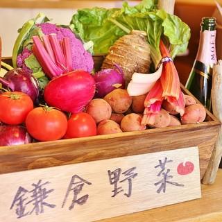 鎌倉野菜にこだわってます!
