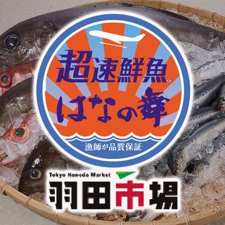 自慢の【超速鮮魚】刺身でぜひ!