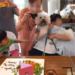 恵比寿 ES Classico - バースデー・ケーキの撮影
