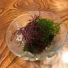 新富鮨 - 料理写真:海藻サラダ