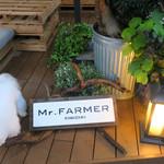Mr.FARMER - クッションに上がろうとしてママに叱られました・・