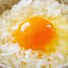 Berashio - 料理写真:卵かけごはん税込180円