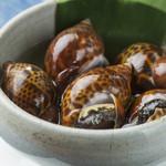 新潟 食楽園 - バイ貝の旨煮