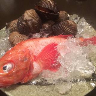 新鮮な海鮮・魚介