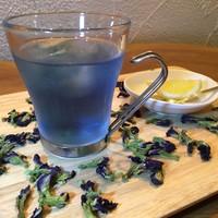 Cafe & Bar Switch - 台湾式魔法茶(英名バタフライピー)原宿人気スイーツにも使われているお茶です!ほのかな甘みの優しい味。もちろんカクテルにも応用しております☆