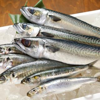 毎日市場から仕入れた鮮度抜群の青魚を是非!