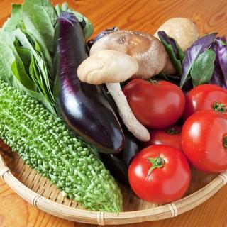 旬なやんばる野菜を使用