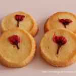 焼き菓子の店フィリカ - 桜とバニラのサブレ