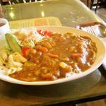 みすたーらいおん - カツカレー スープ