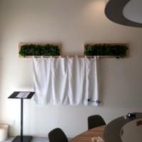 麺屋 いっ徳 - 木と緑を基調とした落ち着いた雰囲気