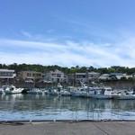 田子の浦港 漁協食堂 - 気持ち良い潮風の昼
