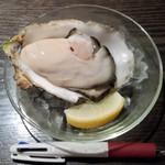 67984131 - 2017.6.3。生牡蠣