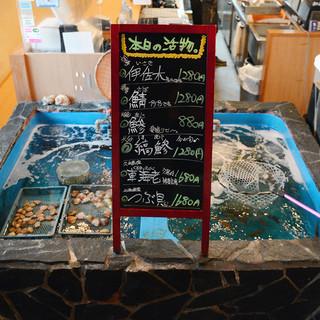 海の子といえば活魚!漁港直送の魚介を食べるなら海の子!!
