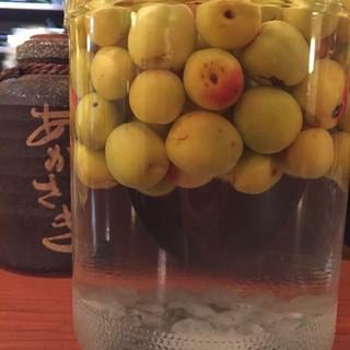 今年も梅酒を漬けました!和歌山県産の古城を使用☆