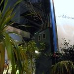アドリアーノ - 南国ムードなグリーン