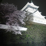 Irish pub Booties・・・ - 満開の夜桜が映える小倉城