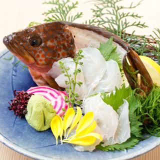 朝獲れ直送の鮮魚を日替わりで