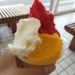 アラモード・キムラ - 料理写真:ジェラート(マンゴー、ミルク、野いちご)