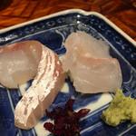 う越貞 - 真鯛とアコウ