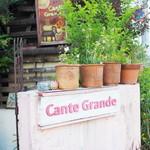 カンテ グランデ -