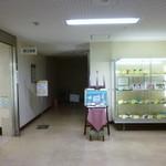 横浜市役所 第三食堂 かをり - '17/06/08 議事堂地下にあります