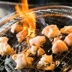 仙台ホルモン・焼き肉 ときわ亭 - お得に食べ飲み放題するのなら【ときわ亭】へ