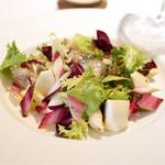 レストラン アラジン - ツブ貝と小蕪とタルティーボのサラダ
