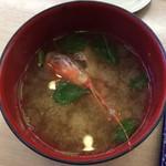 回転寿司 江戸ッ子 - 海老の握りとセットだった味噌汁