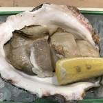 68448823 - 岩牡蠣