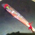6848907 - 帰りに頂いた薔薇