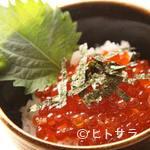 苫小牧新鮮魚市場 - いくら丼