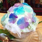 いちょうの木 - 紫陽花 800円       美しすぎでしょ!見とれちゃうでしょ!!