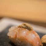 鮨 猪股 - 棘藻蝦(をにえび、=いばらもえび)