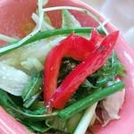 ブロンコビリー - パクチーのサラダ