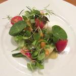 アノニム - 前菜の神戸市内の色々な有機野菜とモッツァレラチーズとバイ貝を使ったサラダ仕立て