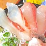 大間新栄丸 - 鯛&ハマチ アップ