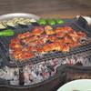らくだ山 地鶏の店 - 料理写真:地鶏炭火焼定食