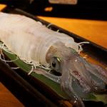 磯っこ商店 - イカの活造り。下足やエンペラは後造りで、塩焼きや天ぷらにできます。