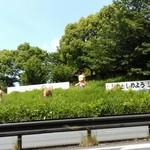 麺屋 龍 - 阪奈道路から見えるセント君