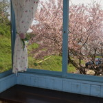 食堂 みつばち - カウンター席(窓側)