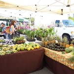 Kakaako Farmers Market -