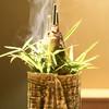 祇園 又吉 - 料理写真:鮎の炭火焼